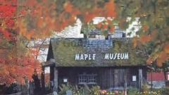 Maple Farms, Saint James Vermont