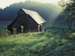 Tennessee Scenery