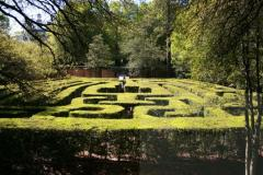 Williamsburg Garden Maze