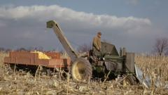 47_11_02-nov-neighbor-picking-corn_fh.jpg